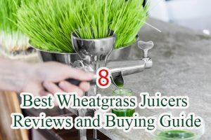 Best Wheatgrass Juicers