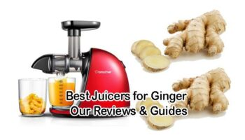 Best Juicers for Ginger – Top 6 Reviews & Guides