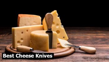 Top 8 Best Cheese Knives To Buy in 2021 Reviews
