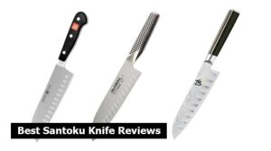 Best Santoku Knife Reviews